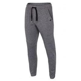Pantalon trening barbatesc 4f Grey