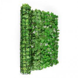 Blumfeldt Fency Bright Leaf, verde deschis, fag, gard - protecție împotriva vântului 300 x 100 cm