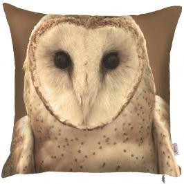 Față de pernă Apolena Owl, 43 x 43 cm