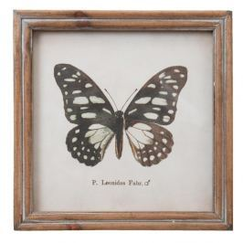 Tablou Clayre & Eef Butterfly, 18 x 18 cm