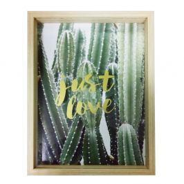 Tablou Maiko 3D Cactus, 30 x 40 cm