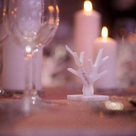 Decor Copac Marmura Thassos (cadou, marturie nunta sau botez)